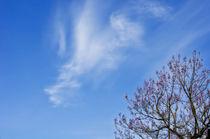 Frühlingsgefühle von AD DESIGN Photo + PhotoArt