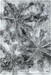 Cristalli di ghiaccio I by dieroteiris