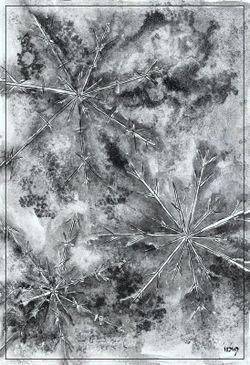 Eiskristalle-2-sig