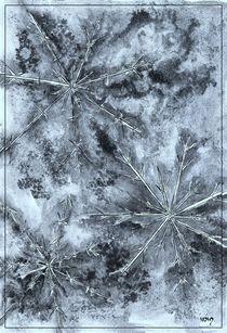 Cristalli di ghiaccio II by dieroteiris
