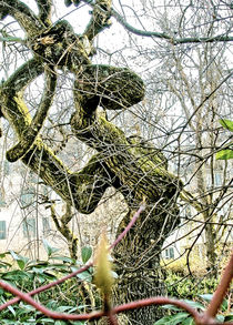 'Baum ...tanzt' by ekk lory