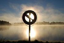 Nebelschwaden by tinadefortunata