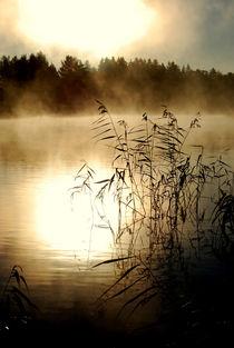 menschenleer Geheimnisvoller See von tinadefortunata