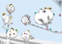 cotton by meytal eizenberg