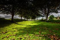 Autumn Walk von Kai Bergmann