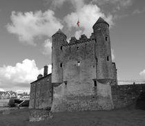 Enniskillen Castle Flag by John McCoubrey