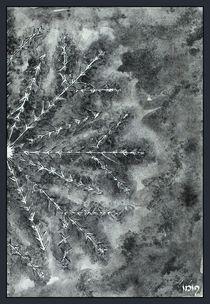 Cristalli di ghiaccio III by dieroteiris