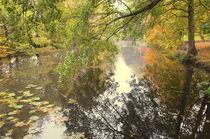A riverside Walk von Dawn Cox
