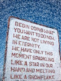 Begin! by Tobias Koch