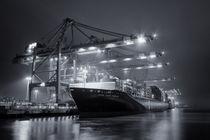 Fidelio Eurogate II by photoart-hartmann