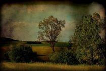 Landschaft by Elke Balzen