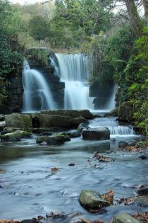 Welsh Autumn Waterfalls by Dan Davidson
