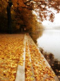 Oktoberfarben von Franziska Rullert
