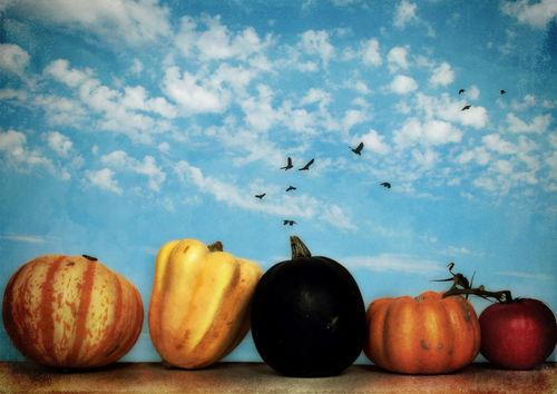 Happyhalloween-c-sybillesterk