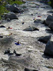 Down The Feather River von Frank Wilson