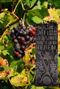 Ich bin der Weinstock.... von Marie Luise Strohmenger