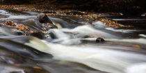Flowing River IV by David Pringle