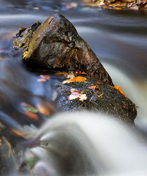 Flowing River von David Pringle