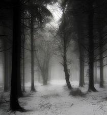 Winterwald by Jens Berger