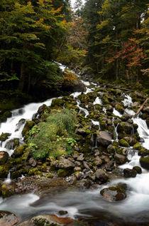 Uelhs deth Joèu Falls von RicardMN Photography