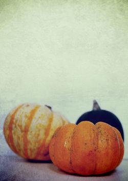 Harvest-ii-c-sybillesterk