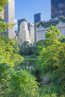 South from Central Park von Ed Rooney