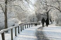 Winterspaziergang  by Barbara  Keichel