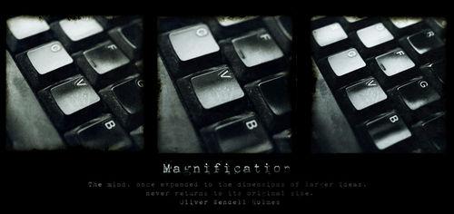 Magnification-quote-c-sybillesterk