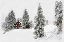 Landschaft im Winter mit Haus, Bäumen und viel Schnee von Matthias Hauser