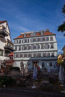Gasthaus zum Schwanen by safaribears