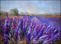 Lavendelfeld von Ellen Fasthuber-Huemer