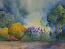 Erwachen by Giseltraud van Doeselar