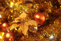 Christmas Is Coming! von sanmai