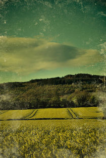 Fields of Sun by Arther Maure