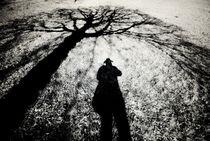 Baum und Mann by Klaus Schäfer