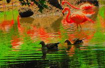 Divine light of flamingo. by Maks Erlikh