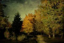 Heidelandschaft  von Elke Balzen