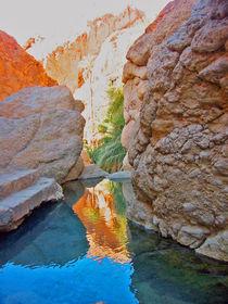 Tunesien-oase