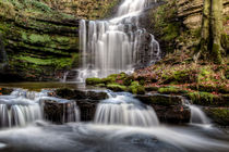 Scaleber Force von Chris Frost