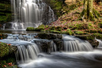 Scaleber Force falls  von Chris Frost