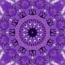 Mandala Lebensfreude lila von Christine Bässler