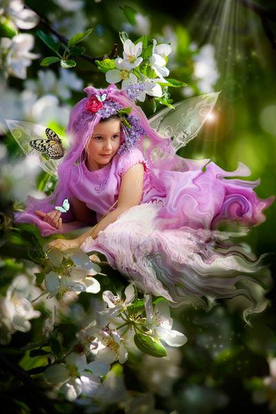 Fairy-04