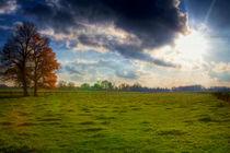 Sonne, Baum, Wolken und Wiese! von Stefan Kierek
