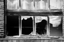 Broken Windows von retina-photo