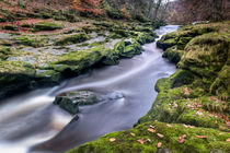Autumnal Strid by Chris Frost