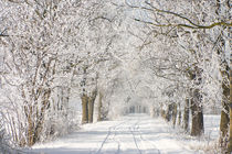 Winter road by Tobiasz Stefaniak