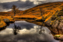 The Pool of Autumn von Derek Beattie