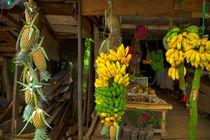Marktstand mit Bananen und Ananas von Gina Koch