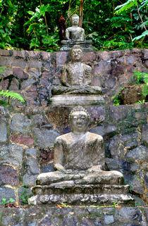 Drei Buddhas im Fels von Gina Koch
