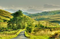 The Long and Winding Road von braveheartimages